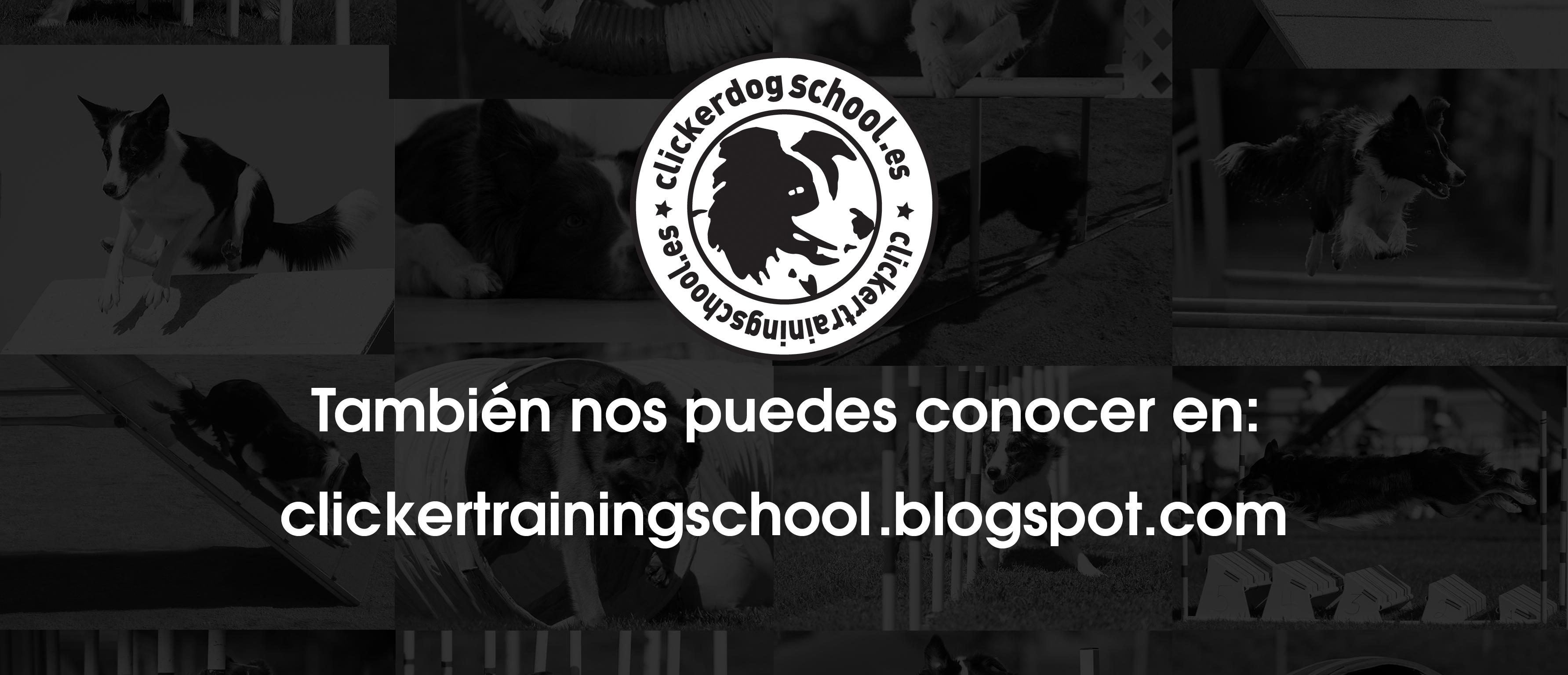 También puedes conocernos en nuestro blog clickertrainingschool.blogspot.com